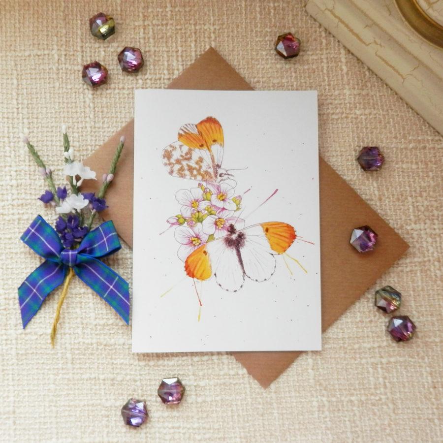 'flutter by' butterflies greeting card  highland hiddle