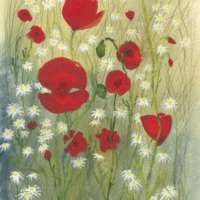 Poppies and Daisy Print thumbnail