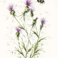Bee and Thistles #5 thumbnail