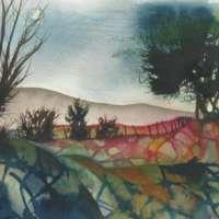 Moss Lane Walk thumbnail