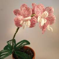 Beaded Orchid thumbnail