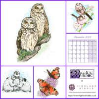 2022 Wildlife in Watercolour Wall Calendar thumbnail