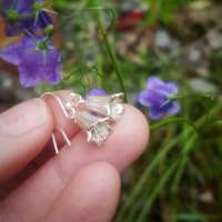 Harebell Flower Earrings thumbnail