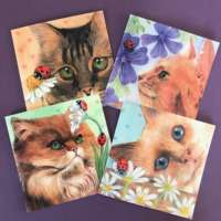 Cat and Ladybird 4 Card Pack thumbnail