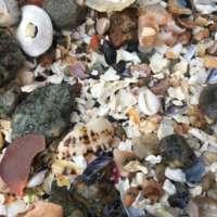 White Shimmer Beach Pendant thumbnail