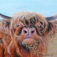 Highland Cow Giclee Print thumbnail