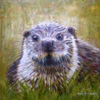 Otter III Greetings Card thumbnail