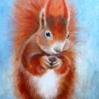 Red Squirrel Greetings Card thumbnail