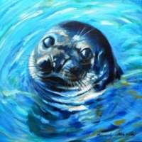 Seal Canvas Print thumbnail