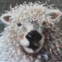 Greyface Lamb Greetings Card thumbnail