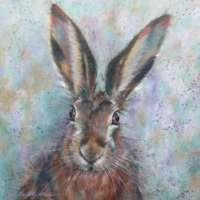 Brown Hare Greetings Card thumbnail
