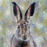 Brown Hare Giclee Print thumbnail