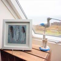 Sea Bird Feathers thumbnail