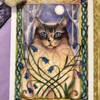 Moonlight Meow Card thumbnail