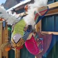 Tweed Hare Head thumbnail