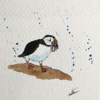 Original Watercolour of a Puffin with a Fish thumbnail
