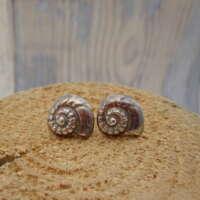 Handcrafted Silver Ammonite Stud Earrings thumbnail