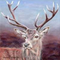 Red Stag Greetings Card thumbnail