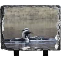 Black Throated Diver Slate thumbnail
