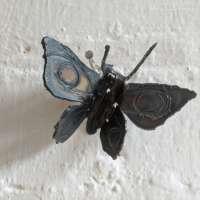 Butterfly Sculpture thumbnail