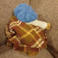 Fraser the Highland Bear thumbnail