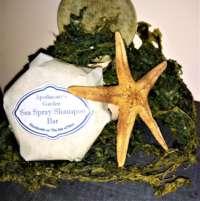 Seaweed Shampoo Bar thumbnail