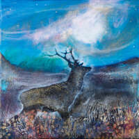 Scottish Stags Card Pack thumbnail