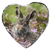 Mountain Hare Leveret Slate thumbnail