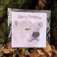 Christmas Polar Bear and Robin 4 Card Pack thumbnail