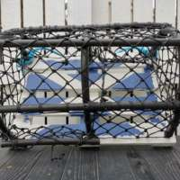 Saltire Lobster Pot Garden Planter thumbnail