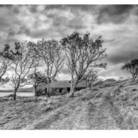 Old Croft House & Trees, Suisinish thumbnail