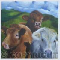 Pack of 5 Square Animals II Cards thumbnail