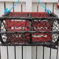 Red Lobster Pot Garden Planter thumbnail