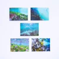 Shetland Underwater Card Pack thumbnail