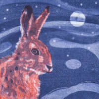 The Hare and the Moon thumbnail
