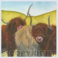 Pack of 5 Square Animal Cards thumbnail