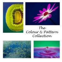 The Colour and Pattern Collection thumbnail