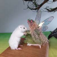 Fairy and Mouse thumbnail