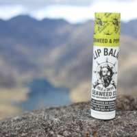 Wild Seaweed & Peppermint Lip Balm thumbnail