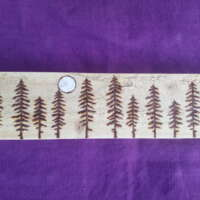 Eleven Moonlit Pine Trees thumbnail