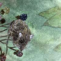 Mouse - Original Watercolour Painting thumbnail