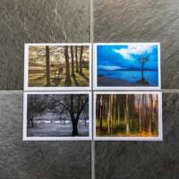 Trees in Scotland Collection thumbnail